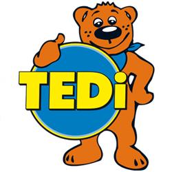 logo-tedi